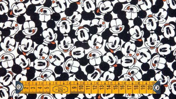 Mickey Caras Felizes