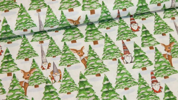 Floresta de Natal