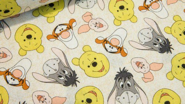 Winnie the Pooh e Amigos
