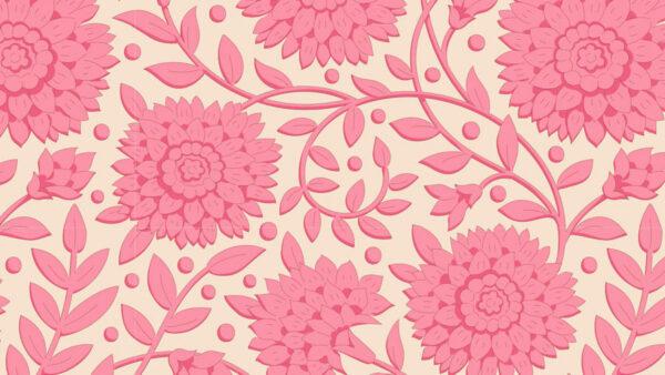 Aella 0006 110035 Aella Pink